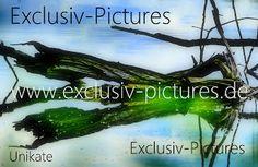 Exclusiv-Pictures: Unikate von Tom Morris