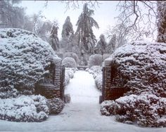 Ashland, The Henry Clay Estate, Lexington, Kentucky - A blanket of fresh fallen snow turns the formal garden into a wonderland as the bounty of bulbs, plants, bushes and trees take a long winter's nap.