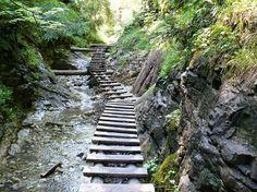 Image result for Slovak Paradise National Forest.