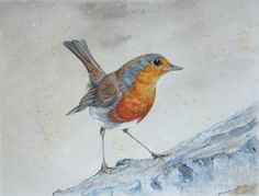 Robin by Emma Giles. Acrylic and watercolour wash on watercolour paper
