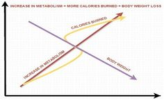 Role of Metabolism in Weight Loss! Boost your metabolism and live healthy.