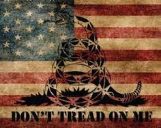 american flag pictures Dont tread on me - Yahoo Image Search Results Old American Flag, American Flag Pictures, American Pride, Patriotic Tattoos, Flag Tattoos, Us Flags, Confederate Flag, Dont Tread On Me, Old Glory