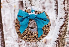 Bird Seed Wreath-several different bird feeders to make with the girls for spring!