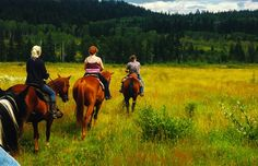Riding Horses through the countryside in British Columbia