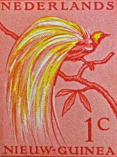 1954 Netherlands New Guinea Paradise Bird Stamp