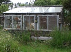 rustic outdoor living areas | Rustic Greenhouse