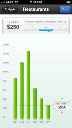 Mint for iPhone | Budget Details