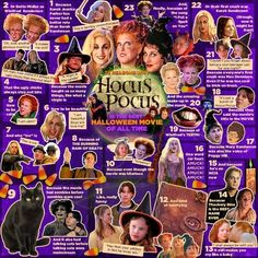 """23 Reasons Why Hocus Pocus Is The Best Halloween Movie Of All Time. memes hocus pocus 23 Reasons Why """"Hocus Pocus"""" Is The Best Halloween Movie Of All Time movies meme Best Halloween Movies, Fröhliches Halloween, Holidays Halloween, Vintage Halloween, Halloween Tricks, Halloween Table, Vintage Witch, Halloween Quotes, Halloween Signs"""