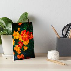 Colorful #flowers by Silvia Ganora  • Also buy this #artwork on wall #prints, #apparel, #stickers, and more. #artboard #redbubble