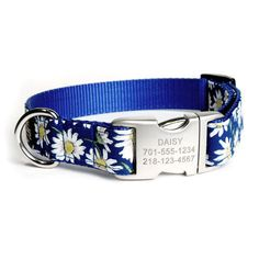 Designer Dog Collar With Personalized Buckle - Daisy | PupLife Dog Supplies
