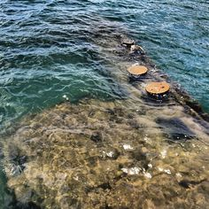 Actual part of one of the sunken ships in Pearl Harbor (June 20, 2012)