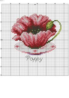 tea cup poppy-3