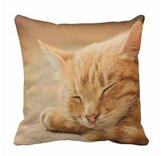 Sleeping Orange Tabby Cat Pillow Case 18x18 *** Don't get left behind, see this great product offer  : Decorative Pillows