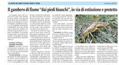 La fauna del parco fluviale articolo di Adriana Robba (La Guida 29 maggio 2015)