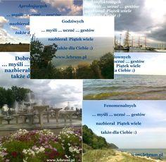 Piątek ... lato 2014 ...  .... więcej na blogach : Przemyślenia o poranku : http://pierwszamysl.blogspot.com/ o szukaniu pracy : http://bez-etatu.blogspot.com/ Widok z okna i komentarz poranka: http://jakimon.blogspot.com o miłosnych perypetiach : http://iruchna.blogspot.com