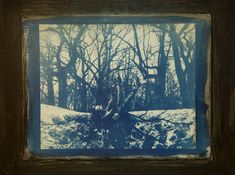Original artwork - This piece is a cyanotype monoprint finished with oil pigment and cold wax, mounted on 12″x16″x1.5″ cradled birch board and ready to hang. The image – Burst – is an original artwork that is part of the Mother series. The series plays with personifications of Mother Nature and our often competing desires to merge with her but also to break away and channel her to fit our imagination. Cyanotype Process, Multimedia Artist, Mother Nature, Metal Working, Birch, Plays, Imagination, Original Artwork, Wax