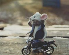 Mouse and bike Mouse gift Bike gift Needle Felted Wool Handmade Felt doll Mouse animals Gifts for him Felted animal Soft sculpture Motorbike