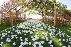 gorgeous plumeria aisle Themarriedapp.com hearted <3