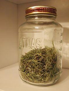 Herbal Remedy: Rosemary Tea for Headaches