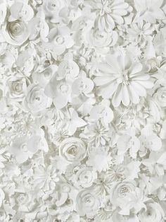 Paper Flowers Backdrop -- great idea for a Step & Repeat