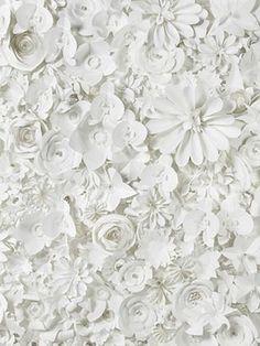 Backdrop! Paper flowers by Sabrina Transiskus