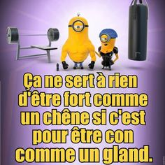 Minions 1, Minions Quotes, Jokes Quotes, Funny Quotes, Funny Memes, Minion Humour, Funny Minion, Quote Citation, Smiles And Laughs