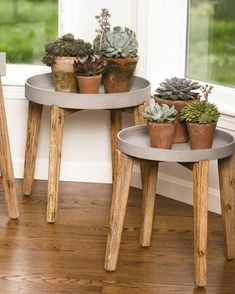 Our Terra Plant Stands pair perfectly with succulents and other plant collections. Acacia wood base with 2-inch deep sandstone composite tray. 5 styles.