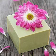 Cold process green clay soap recipe and tutorial Homemade Beauty Recipes, Savon Soap, Soap On A Rope, Green Clay, Soap Packaging, Cold Process Soap, Home Made Soap, Handmade Soaps, Soap Making
