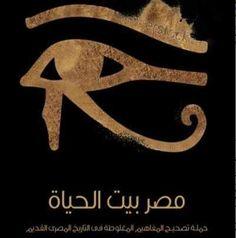 8516ff712 تحميل كتاب مصر بيت الحياة PDF جيهان ممدوح مأمون