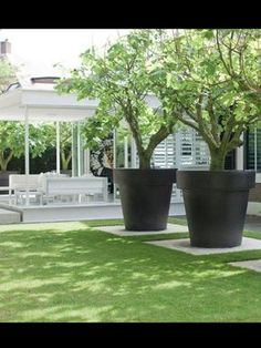 Large planters for trees pots planters nothing says pow in a garden like oversized decor the . large planters for trees Small Gardens, Outdoor Gardens, Jardin Decor, Succulents In Containers, Large Containers, Contemporary Garden, Garden Planters, Large Garden Pots, Large Plant Pots
