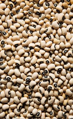 Black-eyed peas are one of the smaller legumes, popular in the American South. There, they are traditionally eaten on New Year's Day to ensure prosperity for the year ahead. We like them any time of the year.