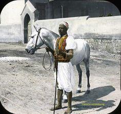 سايس مصري في القاهرة يمسك بخطام حصان عربي أصيل عام 1900م Egypt Arabian Horse and Sais, Cairo 1900.