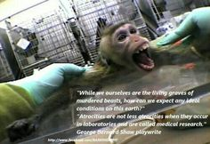 Stop animal testing, its legal abuse and murder of innocent animals. Inconclusive on most tests when applied to humans. Be the voice that these animals need.