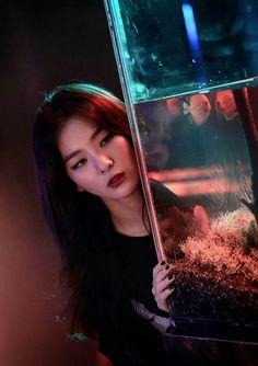 seulgi and irene style similar Kpop Girl Groups, Korean Girl Groups, Kpop Girls, Red Velvet Seulgi, Red Velvet Irene, Seulgi Photoshoot, Red Velvet Photoshoot, Oppa Gangnam Style, Velvet Wallpaper