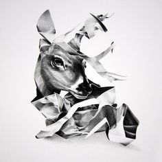 Animals / Christina Empedocles — Designspiration