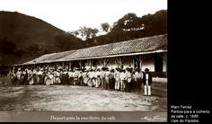 slavery - Escravidão em fotos reais da época