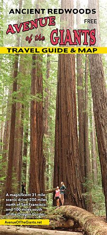 Avenue Of The Giants | Northern California :: US HWY 101 - info on area, nearby towns/food/lodging