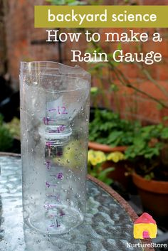 Backyard science experiment - how to make a rain gauge! Perfect activity for little ones who are interested in the weather