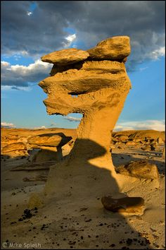 ) Little Dragon Hoodoo