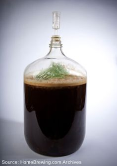 Using Herbs and Spices to Enhance Your Brews