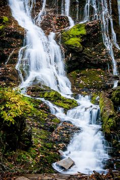 Mingo Falls - Great Smoky Mountains National Park, North Carolina     Travel the US for twenty bucks per day.
