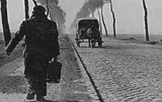 Kutatóintézet a kiutasított németek - 10,000,000+ polgári deportáltak a második világháború után