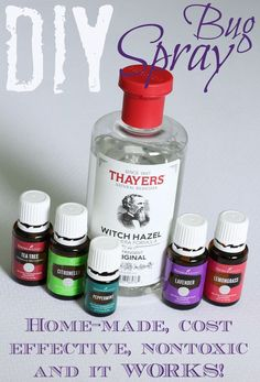 This DIY bug spray i...