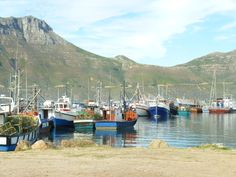(Hout Bay) Cape town, South Africa