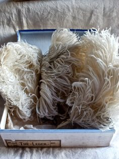 antique ostrich feathers