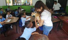 Ruta de Educación en Bienestar Animal llega a los colegios monterianos - LARAZON.CO Students, Wellness, Street, Activities, Places
