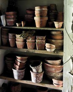 Garden Tour: Hollister House - Martha Stewart Home and Garden