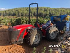 At AVINA we offer sturdy, heavy duty wine accesories such as wine bottle stoppers and waiters wine openers. Wine Bottle Stoppers, Wine Making, The Incredibles, Amazon, How To Make, Amazons, Wine Bottle Corks, Riding Habit