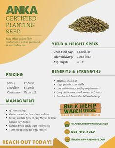 Hempowering your home & company with the BEST raw bulk hemp supplies, from raw hemp fiber to rope, twine to hemp foods and much more! Hemp Seeds, Salon Business, Business Ideas, Propagation, Planting Seeds, Sprouts, Warehouse, Food To Make, Harvest