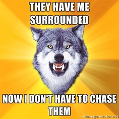 Courage Wolf - they have me surrounded Now I don't have to chase them